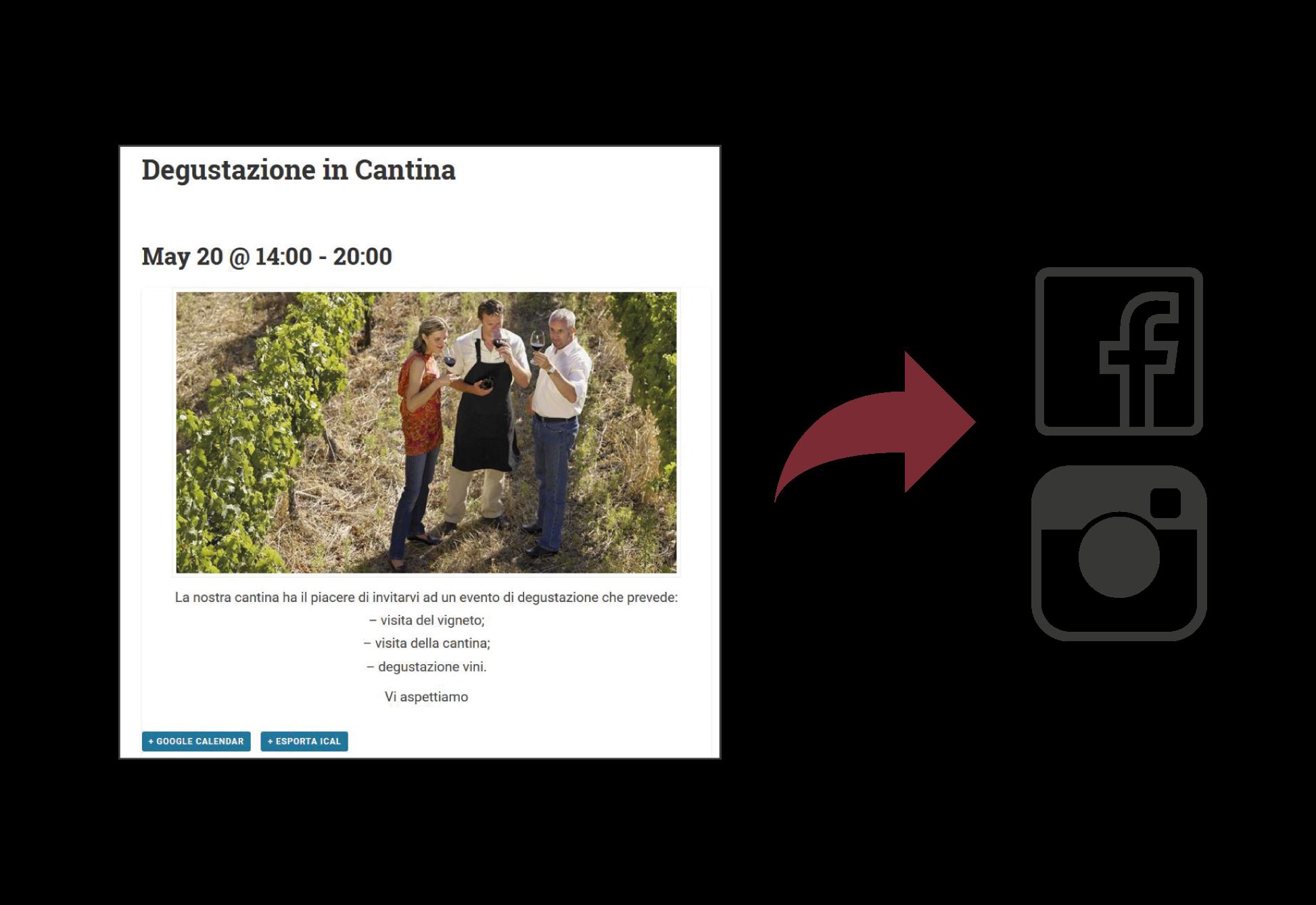 Winesuites - Pubblicazione automatica dei contenuti sui social network